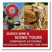 Winelands Experience Tour Company