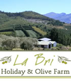 La Bri Holiday & Olive Farm