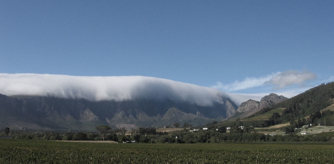 "Welcome to the New ""Franschhoek at your Fingertips"" Web Site"